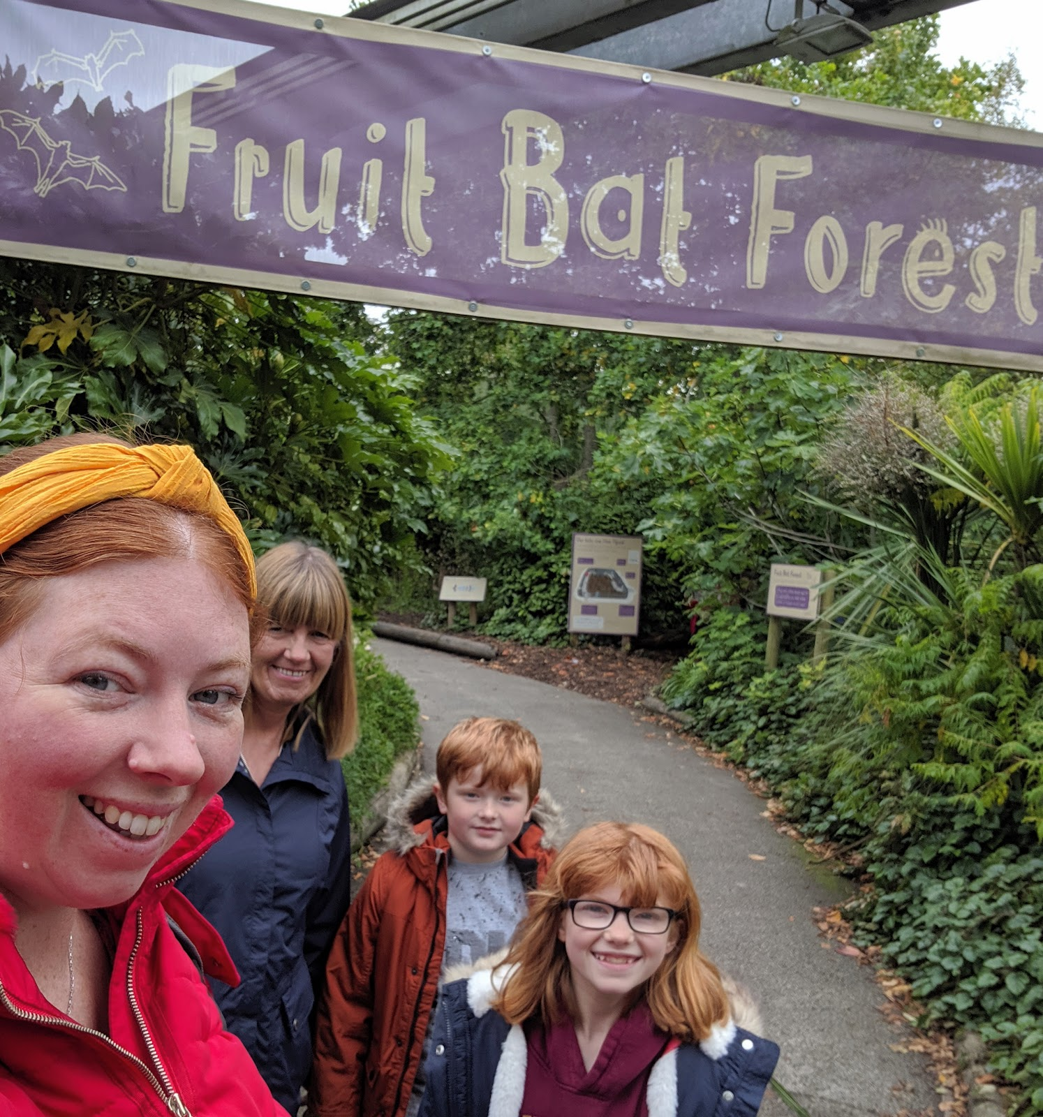 Chester Zoo & Blackpool Tower Bus Trip with National Holidays - A Review  - Chester Zoo Bat Cave
