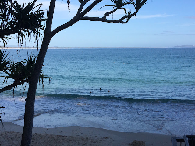 Swimming at Noosa Heads, Queensland