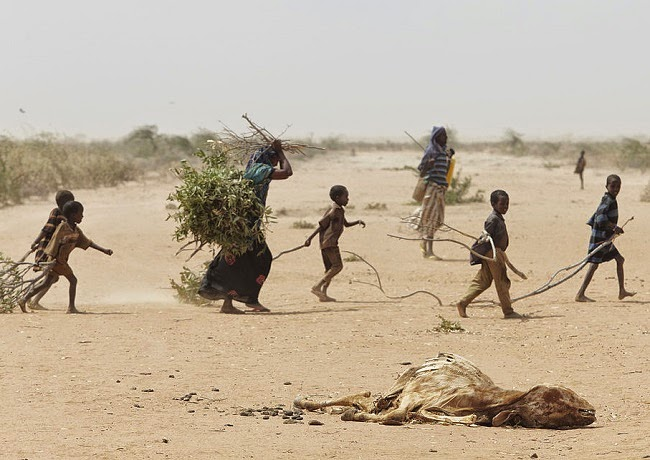 A family fleeing the 2011 drought and famine in Somalia collects firewood outside Dadaab refugee camp in Kenya. (Credit: Andy Hall/Oxfam via Wikimedia Commons) Click to Enlarge.