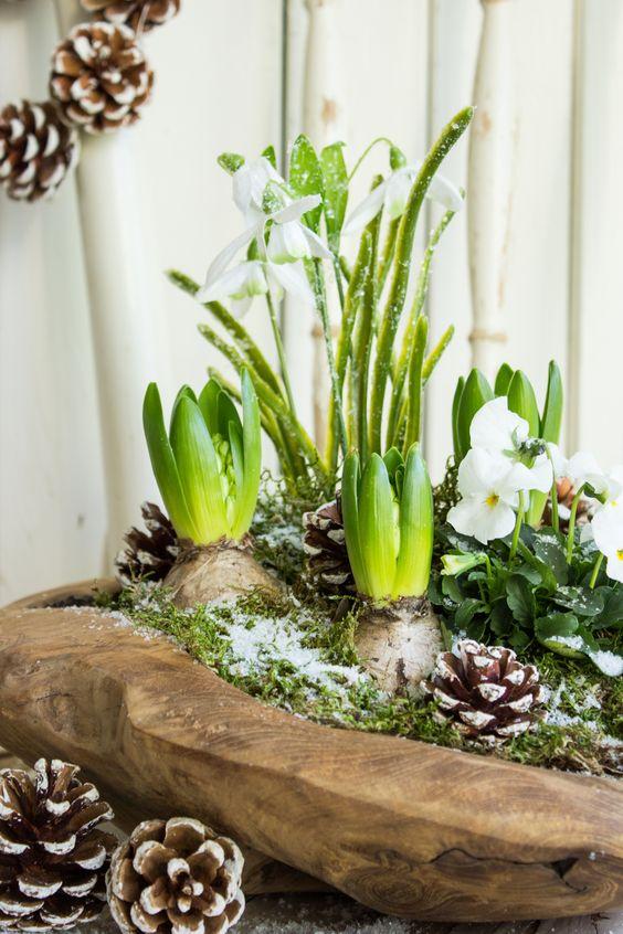 Aleja kwiatowa blog wn trzarski dekoracje do domu for Pinterest blumen