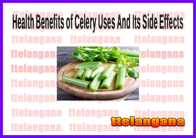 Health Benefits of Celery Uses And Its Side Effects