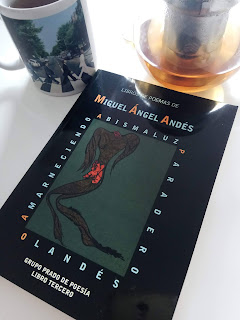 Miguel Ángel Andés