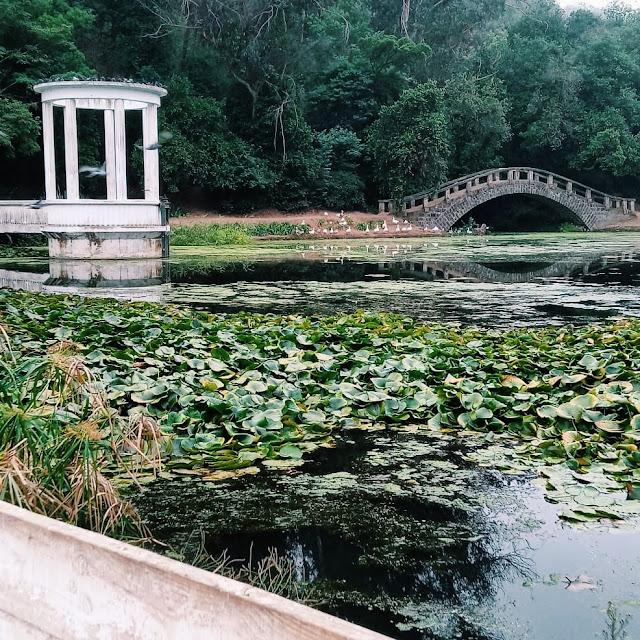Jardín Botánico Viña del Mar