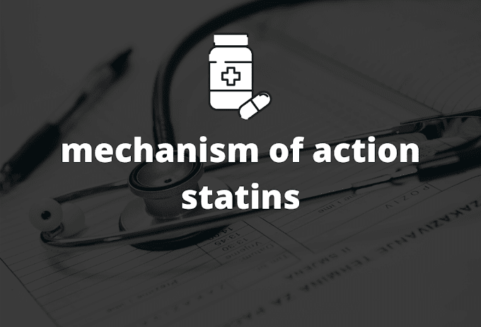 mechanism of action statins #all statins in details