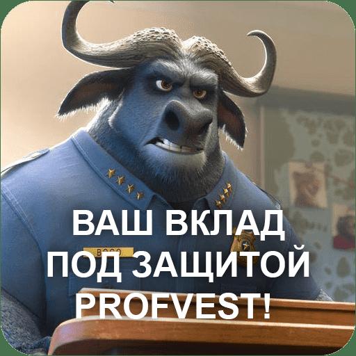 Profvest страхует