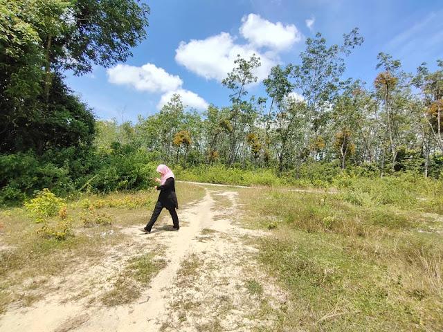 Tanah Untuk Dijual di Mukim Joh Kg Pak Gombak Labok Machang Sebelah Tapak Bandar Baru Sungai Bagan (TINGGAL 4 LOT)