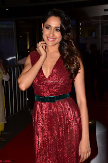Pragya Jaiswal stunning Smiling Beauty in Deep neck sleeveless Maroon Gown at 64th Jio Filmfare Awards South 2017 17 June 2017 ~  Exclusive