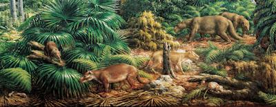 Resultado de imagen para paleoceno