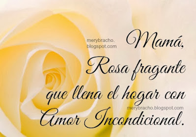 imagen flor frases lindas para mi madre mama llena de amor