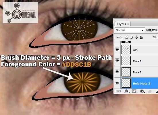 membuat vector bola mata di photoshop - tutorial membuat vector di photoshop - membuat foto menjadi kartun dengan photoshop