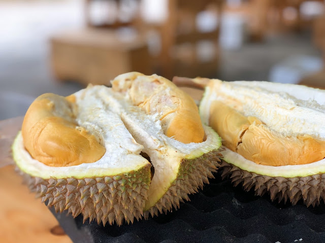 durian-list of indonesian fruits