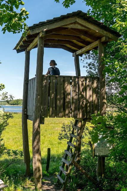 Westerwaldsteig Etappe 6 von Freilingen nach Nistertal  Westerwälder Seenplatte – Stöffelpark 07
