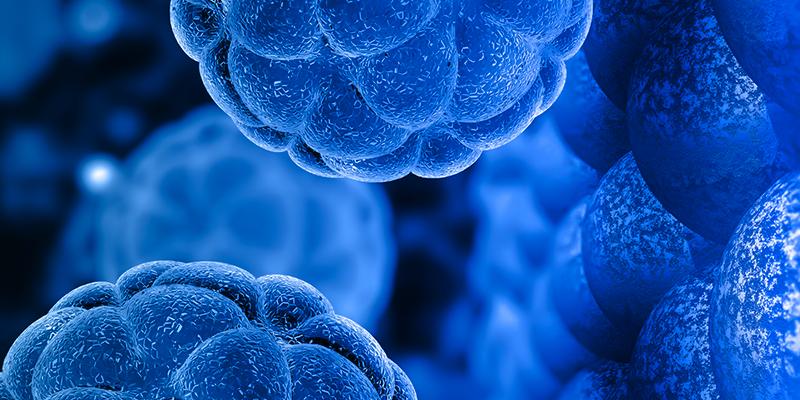 «قرصنة الميكروبات - Hacking Microbes»