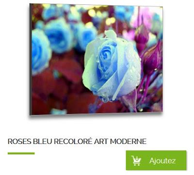 Photo de rose recolorisé, tableau moderne