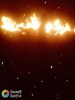 गेहूं के बोझा में लगी आग,200 बोझा गेंहू जलकर राख।