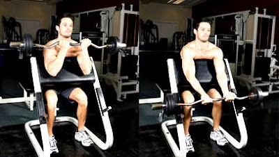 Weight training workout routine for ectomorph or thin men