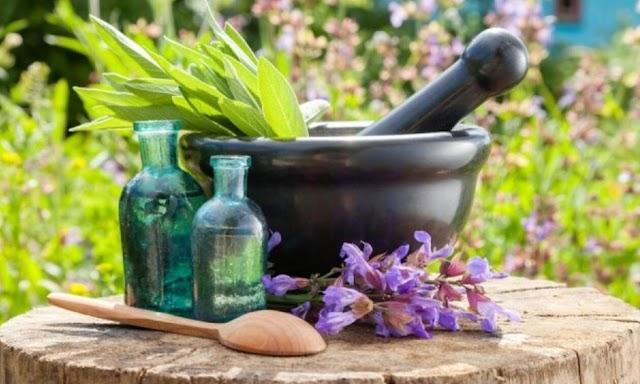 5 θαυματουργά αντιβιοτικά της φύσης