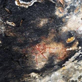 Altro particolare delle pitture rupestri