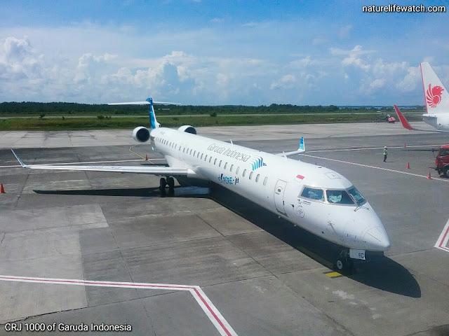 PESAWAT Bombardier  CRJ100 yang dioperasikan oleh Garuda