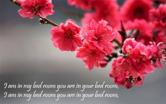 Good Night Flower Quotes