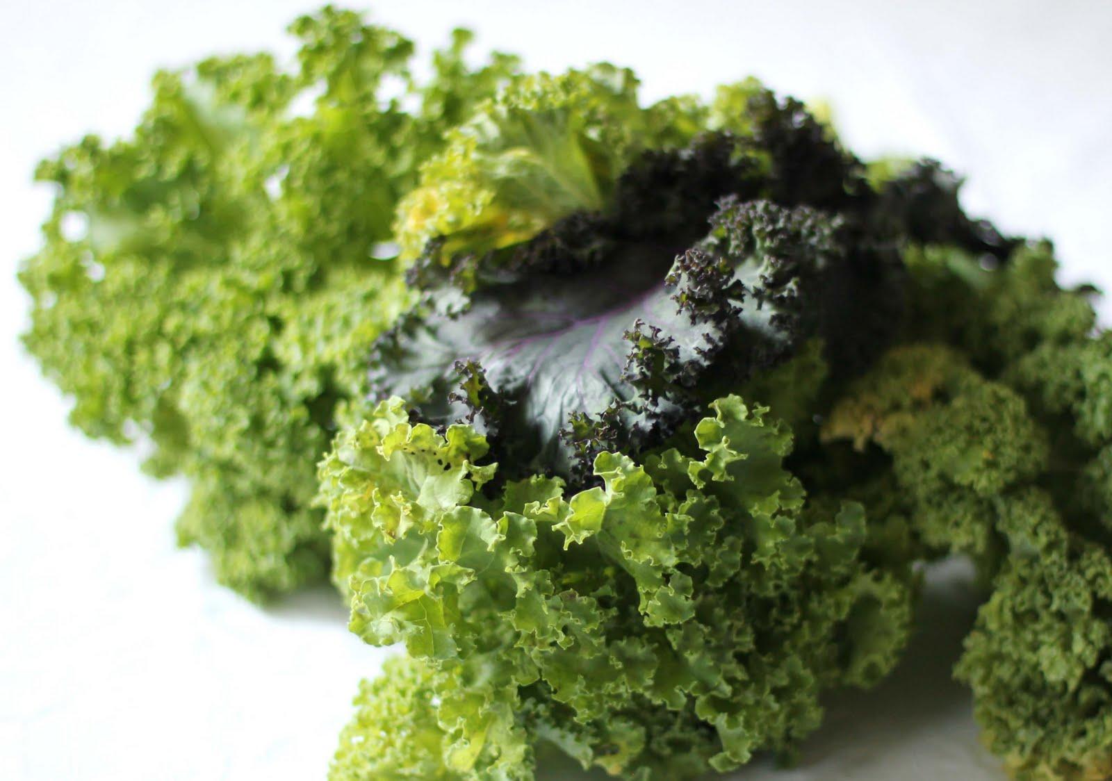 grönkål koka