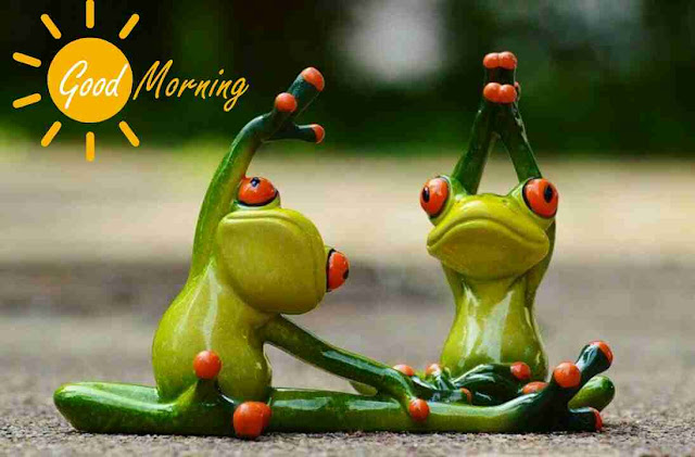 very funny good morning image of morning exercise