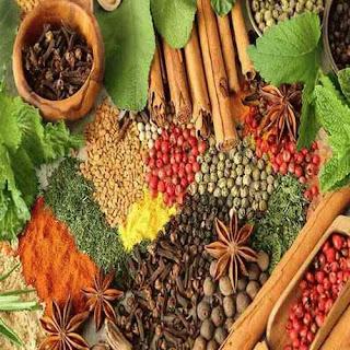 الأعشاب نظرة أخرى للعلاج Herbs %D8%A7%D9%84%D8%B7%D