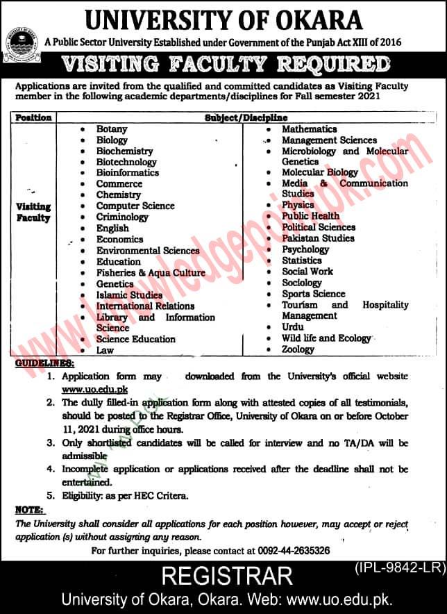University of Okara Latest Jobs 2021 / Application Form Download