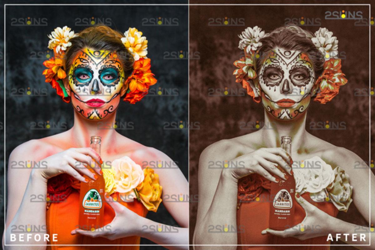 Dia De Muertos Halloween Presets 4541268
