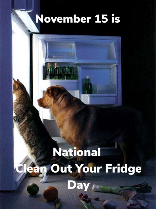 National Clean Out Your Fridge Day Wishes Photos