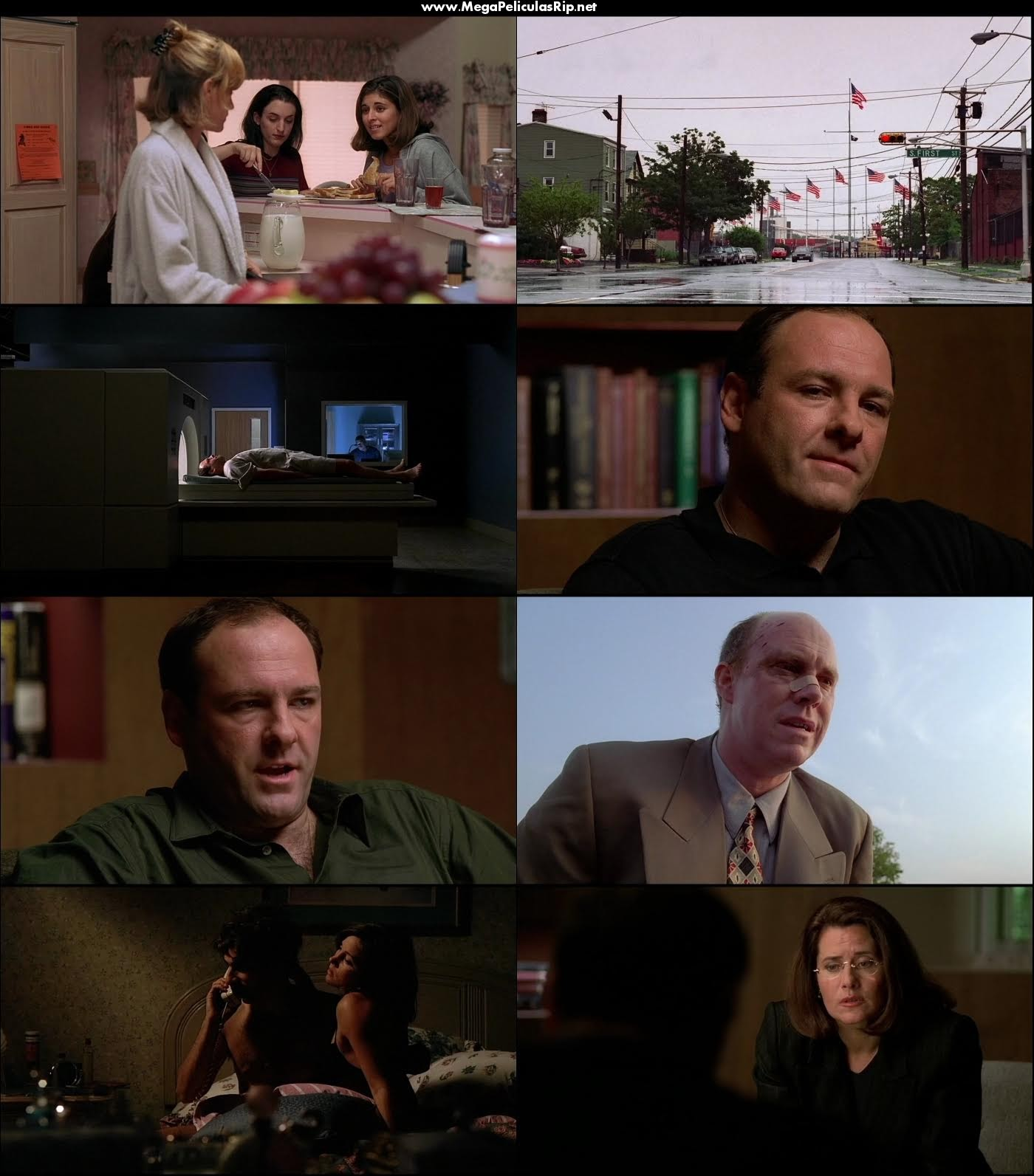 The Sopranos Temporada 1 1080p Latino
