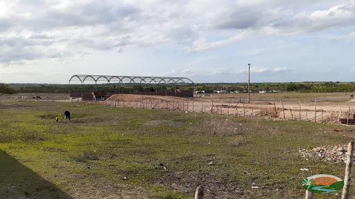 Fábrica de beneficiamento de mandioca será construída em Córrego