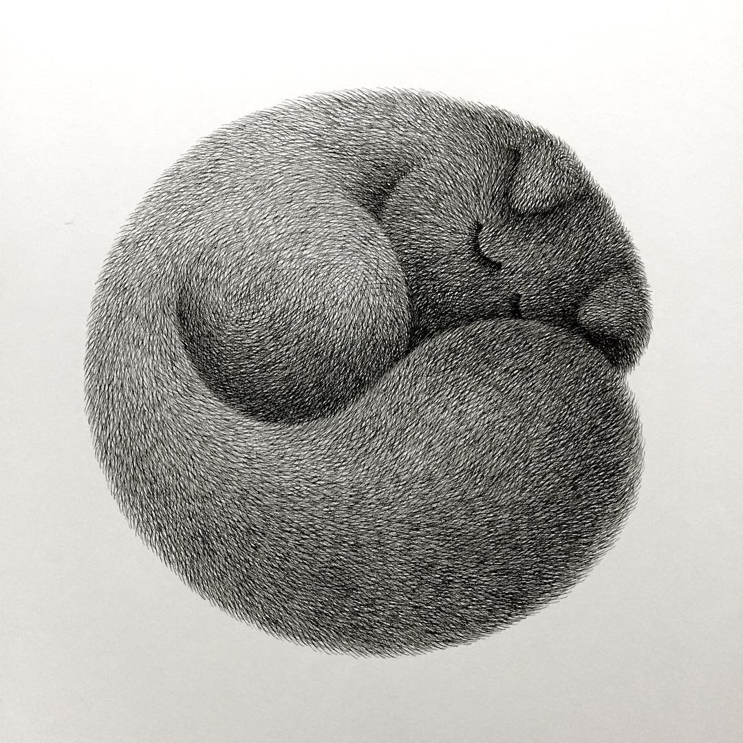 08-Kitty-No-10-Kamwei-Fong-14-Furry-Cats-and-1-Furry-Monkey-Drawings-www-designstack-co