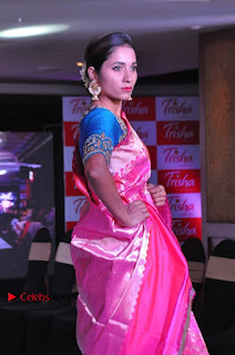 South Indian Celebrities Pos at Love For Handloom Collection Fashion Show  0017.jpg