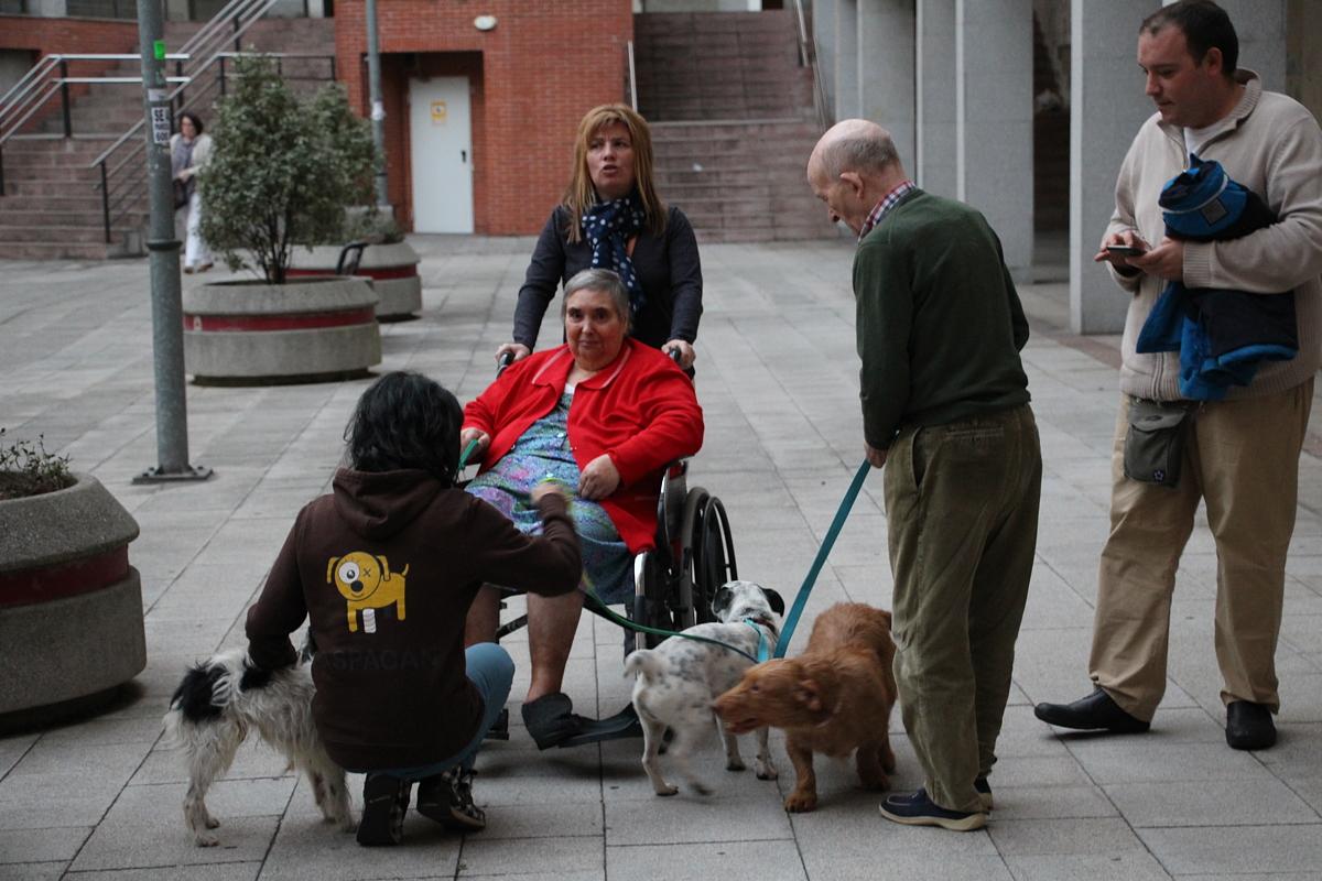 Terapia con perros con ancianos en una residencia