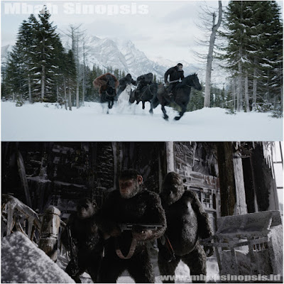 Sinopsis Film War for the Planet of the Apes 2017