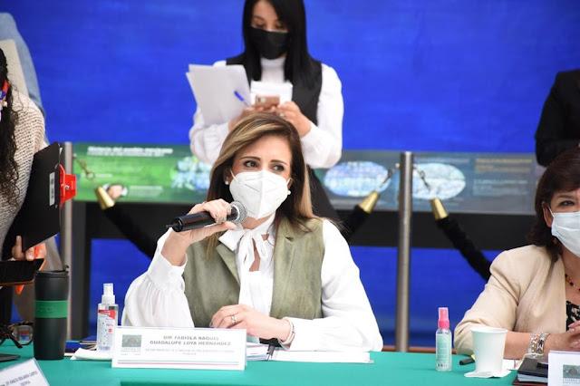 Iniciativa presidencial en materia de industria eléctrica es inconstitucional y antiambientalista: Fabiola Loya Hernández