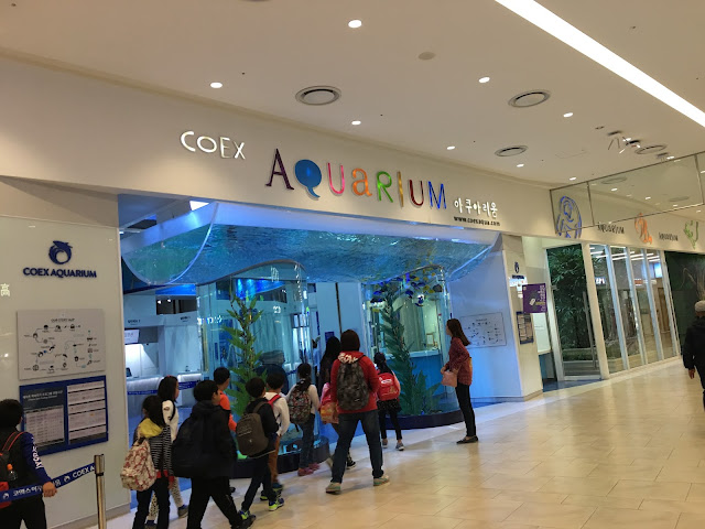 Let's go to Korea #4 : COEX Aquarium @Seoul!