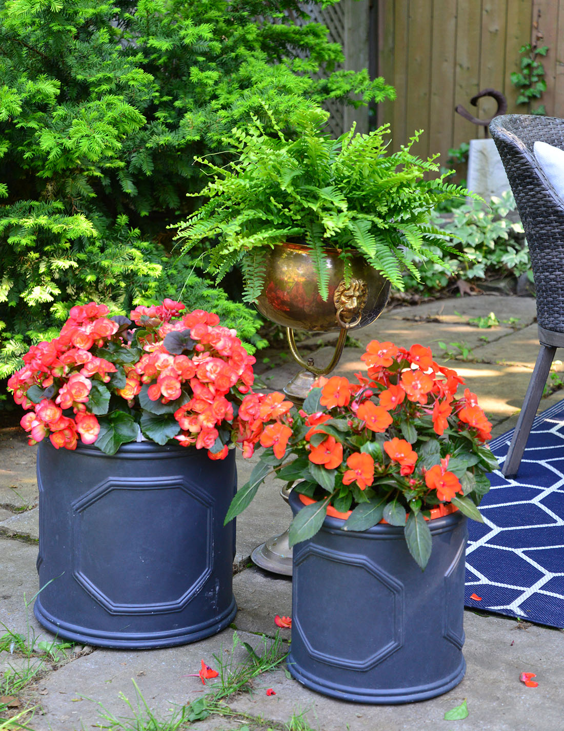 outdoor backyard dining, summer entertaining tips, begonia in planter, orange summer flowers