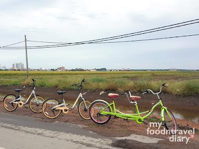 在适耕庄稻田园骑脚车游