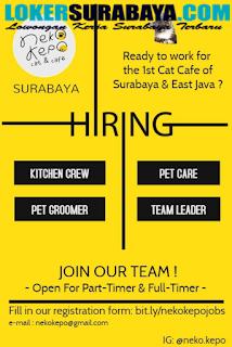 Loker Surabaya Terbaru di Neko Kepo Cat and Cafe Juli 2019