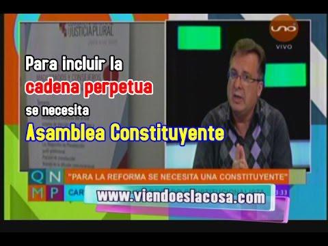 DR. ALARCÓN SOSTIENE QUE PARA INCLUIR LA CADENA PERPETUA SE NECESITA ASAMBLEA CONSTITUYENTE