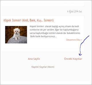 blog anasayfa kayıt sayısını değiştirmek