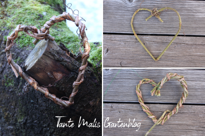 Tutorial grapevine heart