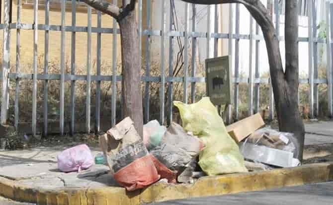 limpieza, contenedores, reciclado
