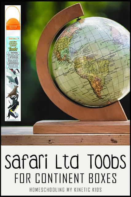 Safari Ltd Toobs are great for adding to your Montessori-inspired Continent Boxes, sensory bins, learning times, and more.
