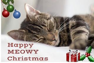 Sleeping Kitty Christmas Card