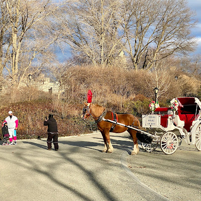 Central Park charioteer taking a photo of his recent fare, a father and daughter