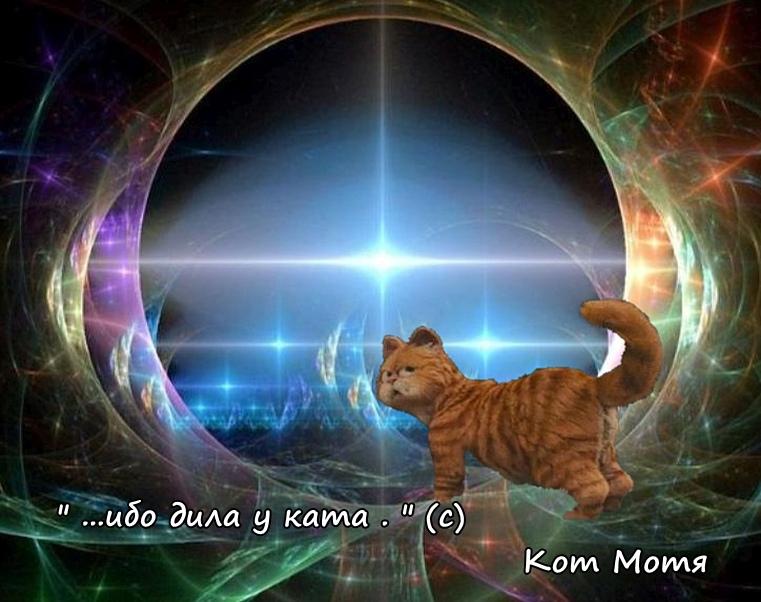 Блог Кота Моти  - Страница 2 Qb9rQU0q1YI