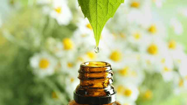 Natural Oils Types and Uses